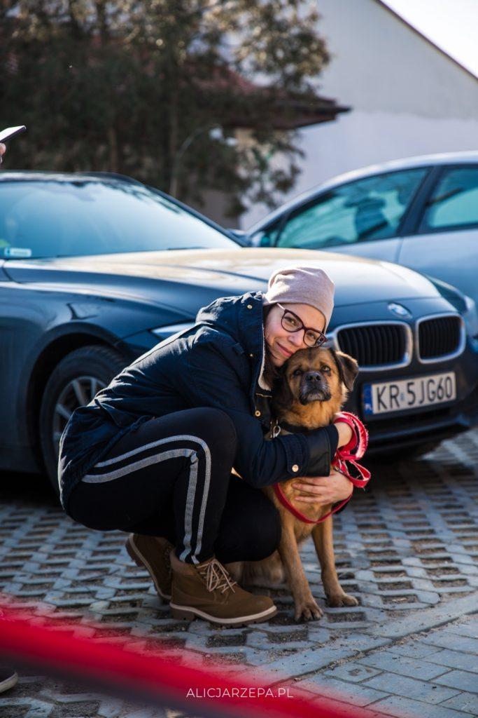Krakowskie Dzień Otwarty Krakowskiego Towarzystwa Opieki nad Zwierzętami / fotoreportaż / © Alicja RzepaKTOZ - Dzień Otwarty / © Alicja Rzepa