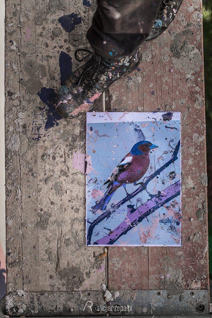 Ptasie murale na Kozłówku / Kraków / fot. Alicja Rzepa