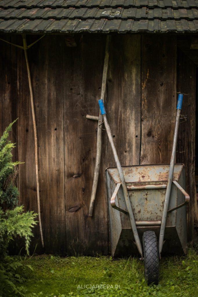 Dyrkówka, Brzezna / fotoreportaż / © Alicja Rzepa